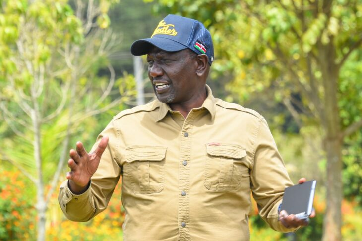Deputy President William Ruto has laughed off a proposal by a section of politicians to postpone the 2022 General Election.