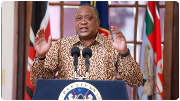 Jerotich Seii unpacking President Uhuru family's wealth.